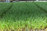 광양시,친환경농업 지원사업 이렇게 달라집니다-농업지원과 2.jpg